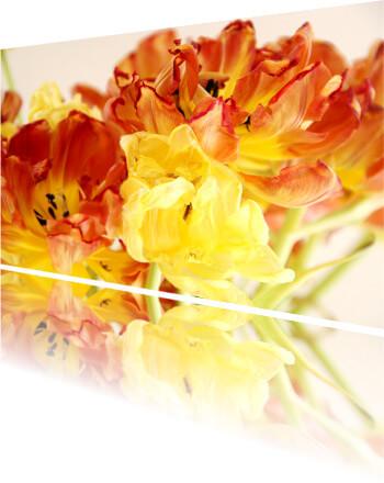 Produkt Foto von Blumen